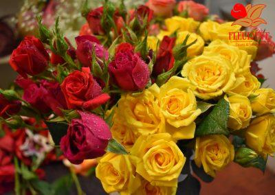 fleureve - roses spray 02