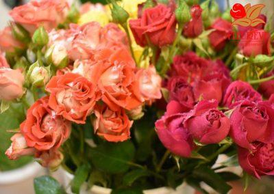 fleureve - roses spray 04