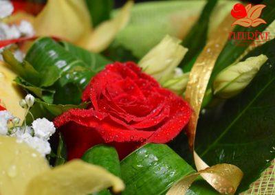 fleureve-bouquet-fleurs-coloquintes 01