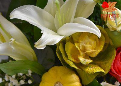 fleureve-bouquet-fleurs-coloquintes vertical 01