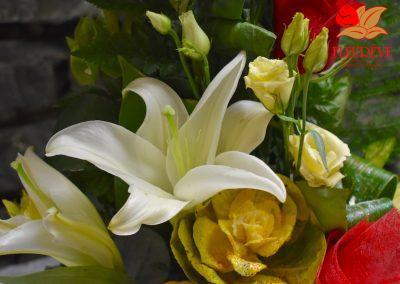 fleureve-bouquet-fleurs-coloquintes vertical 04